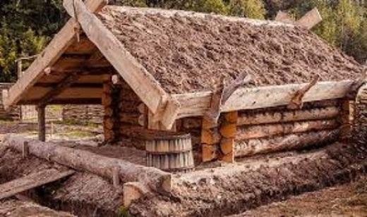 Утепление потолка бани природным материалом - мхом на снимке
