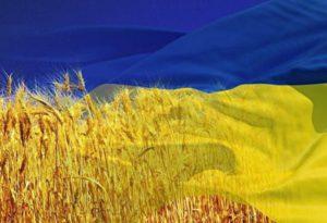 Флаг Украины: материалы изготовления
